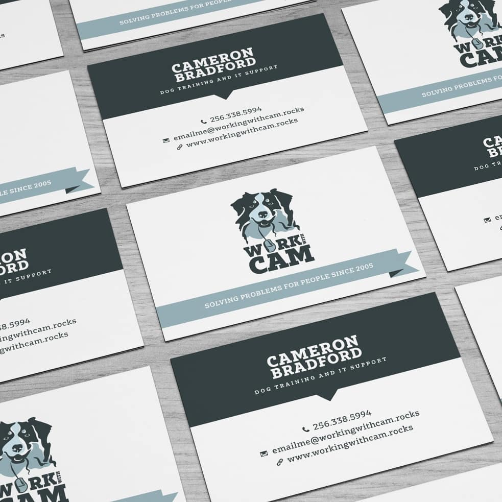 Logo and stationery designs done for a IT and dog expert